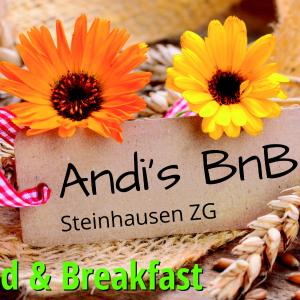 Hotel Pictures: Andi's BnB, Steinhausen