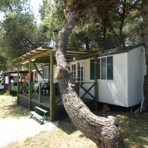 酒店图片: Mobile Home - Camp Dalmatia Privlaka, 普利拉卡