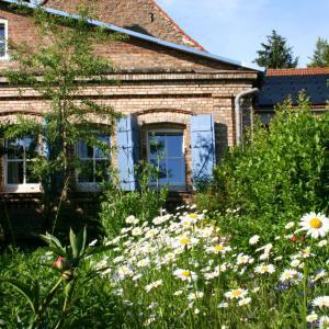 Hotelbilleder: The Little English Cottage, Rollsdorf