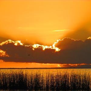 酒店图片: Lake Albert Caravan Park, Meningie