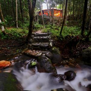 Hotel Pictures: Daintree Cascades, Cape Tribulation