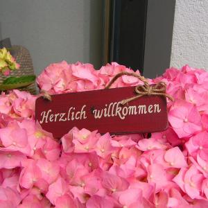 Hotellikuvia: Alpina Appartements, Schröcken