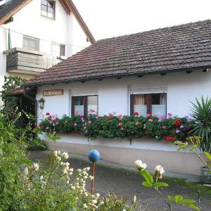 Hotel Pictures: Ferienhaus Steinger am Blumengässle, Müllheim