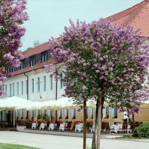 Hotel Pictures: Schloss Hotel Dresden Pillnitz, Dresden
