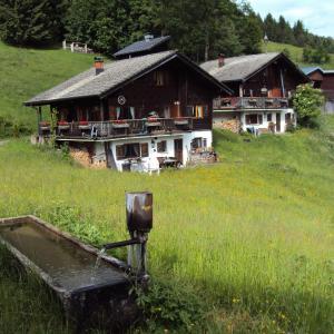 Hotellikuvia: Ferienwohnung im Blockhaus Metzler, Schwarzenberg im Bregenzerwald
