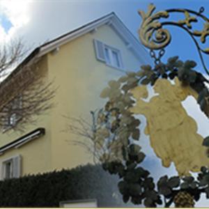 Hotel Pictures: Engeli, Dornach