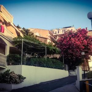 Hotel Pictures: Apartments Lazar, Sveti Stefan