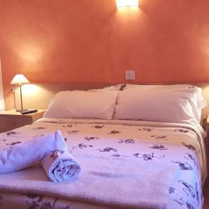 Hotel Pictures: Hostal La Cuineta de Cal Triuet, Gósol