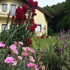 Hotel Pictures: Das gelbe Haus, Sankt Christophen