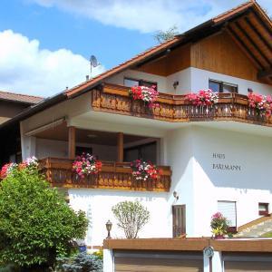 Hotelbilleder: Apartment Bartmann.2, Gammelsbach