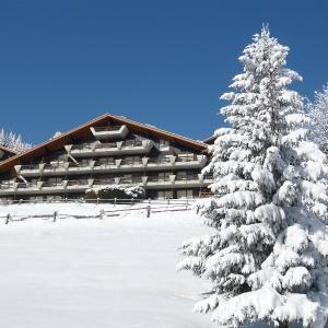 Hotel Pictures: Chalet Centaure.5, Les Rasses