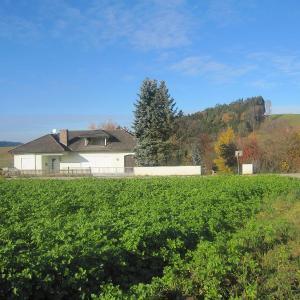 Hotelbilleder: Holiday Home Landhaus im Klosterwinkel, Beutelsbach
