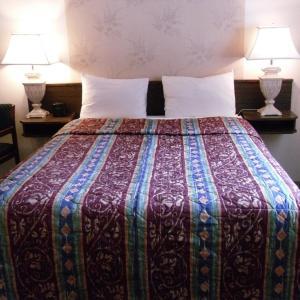 Hotel Pictures: Canyon Alpine Motel, Boston Bar