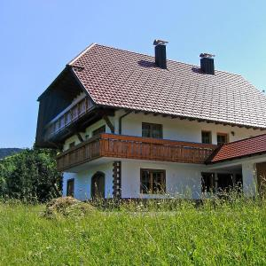 Hotel Pictures: Apartment Kempfenhof, Oberharmersbach
