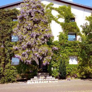 Hotel Pictures: Apartment Plath, Nennig