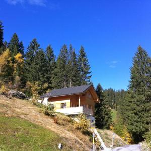 Hotel Pictures: Chalet Börtji, Furna