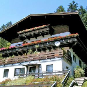 Hotellikuvia: Apartment Haus Enzian, Hollersbach im Pinzgau