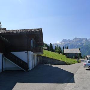 Hotel Pictures: Chalet Anuschka, Lenk