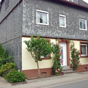 Hotel Pictures: Holiday Home Haus Irmgard, Haserich