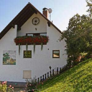 Hotel Pictures: Holiday Home Hartmann, Laudenau