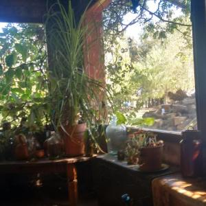 Hotelbilder: Cabañas El Rinconcito, San Antonio de Areco