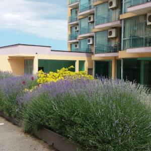 Hotelfoto's: Apartment 207 Belvedere, Nesebar