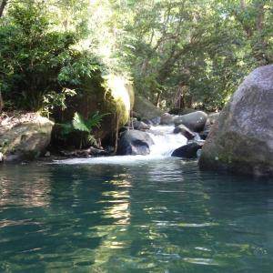 Foto Hotel: Daintree Secrets Rainforest Sanctuary, Diwan