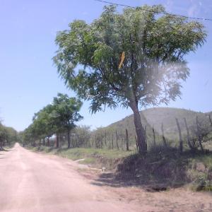 酒店图片: Alto del Carmen, Cruz de Caña