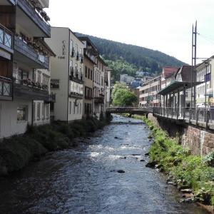 Hotel Pictures: Wildbadferien, Bad Wildbad