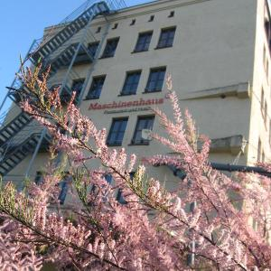 Hotelbilleder: Hotel Maschinenhaus, Groß Neuendorf