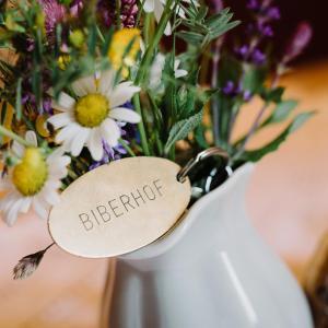 酒店图片: Apartments Biberhof, 比伯维尔