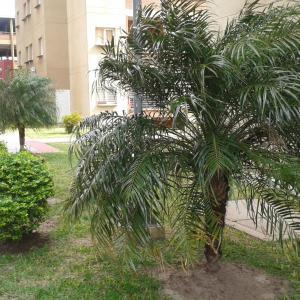 Hotellbilder: Departamento Juan Domingo Peron, Resistencia