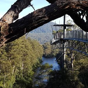 Hotellbilder: Tahune AirWalk Lodge, Geeveston