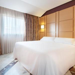 Hotel Pictures: Tryp Puertollano Hotel, Puertollano