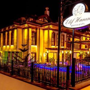 Hotelbilder: Elif Hanim Hotel & Spa, Akyaka