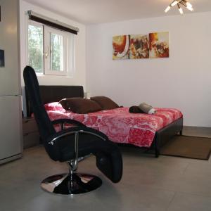 Hotel Pictures: Studio d'hôtes Villa Castelnau, Castelnau-le-Lez