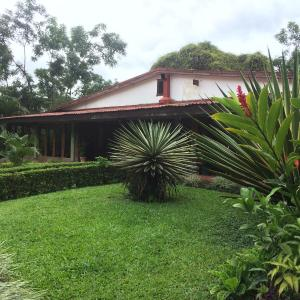 Hotel Pictures: Casa Atirro, Atirro