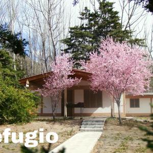 Fotos do Hotel: Villa El Refugio, Potrerillos