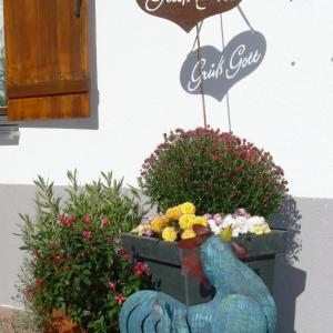 Hotellikuvia: Pension Muggengrat, Lech am Arlberg