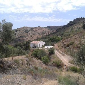 Hotel Pictures: El lugar de Paco, Almogía