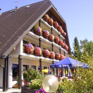 Hotelbilleder: Schwarzwald Gasthof Sternen-Post, Bräunlingen