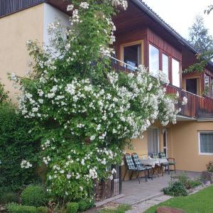 酒店图片: Ferienwohnungen Vidoni, 博登斯多夫