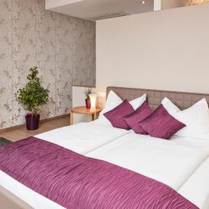 酒店图片: Hotel Garni Birkenhof, 巴特拉德克斯堡
