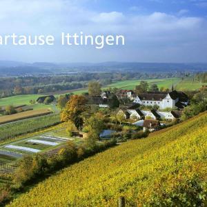 Hotel Pictures: Kartause Ittingen, Warth