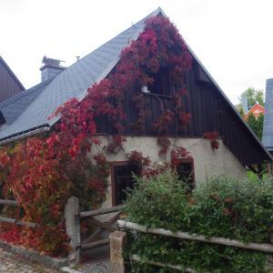 Hotelbilleder: Berghaus Frieda, Kurort Altenberg