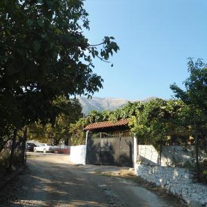 酒店图片: Eva Apartments, Dhërmi