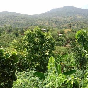 Hotel Pictures: Casa Rural Montequin, Calabazo