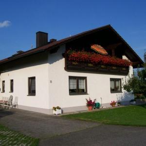 Hotel Pictures: Ferienwohnung Wenzl, Zandt