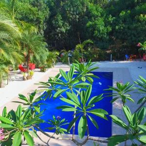 Hotel Pictures: Blanconejo de Montezuma, Montezuma