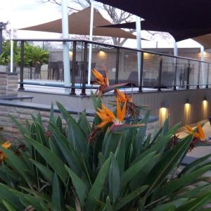 Zdjęcia hotelu: Hotel Colibri, Koné